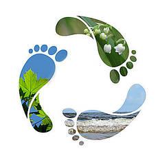 Услуги в сфере экологии