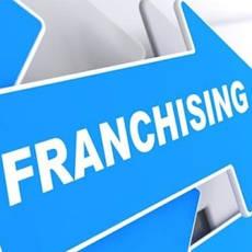 Франчайзинг, франшизы