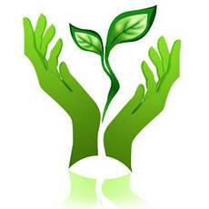 Услуги в сфере экологии, общее