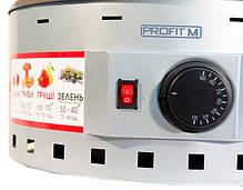 Сушка электрическая Profit M ЭСП 02Е 820вт 20л для фруктов, овощей, яблок, мяса, рыбы, ягод, трав, грибов, фото 3