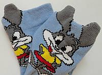 Шкарпетки дитячі демісезонні блакитного кольору, об'ємний малюнок, р. 8-10, фото 1