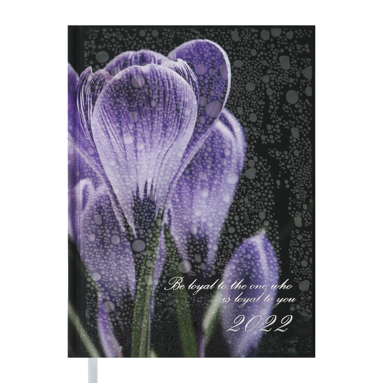 Щоденник Buromax датир. 2022 POSH, A5