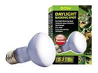 Лампа Exo Terra Sun Glo Neodymium R20, 50 Вт.