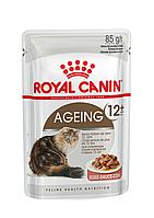 Консервы Royal Canin Ageing +12 (в соусе), для кошек старше 12 лет, упаковка 12шт х85г