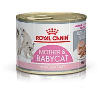 Консервы Royal Canin Babycat Instinctive, для котят до 4 месяцев,195г
