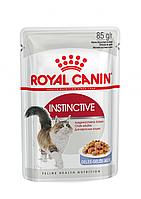 Консервы Royal Canin Instinctive (в желе), для кошек старше 1 года, упаковка 12шт х85г