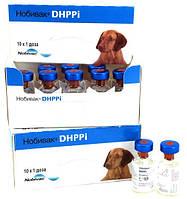 Intervet Нобивак DHPPi Комбинированная живая вакцина