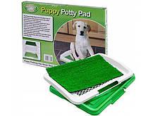 Туалет для собак Puppy Potty Pad, собачий туалет з травою