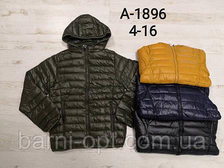 Куртки на мальчиков оптом, Sincere, 4-16 рр, фото 2