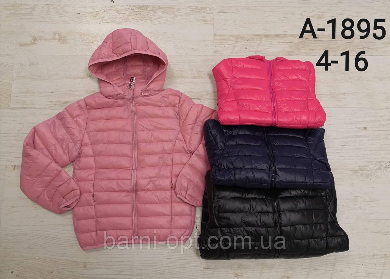Куртки для дівчаток оптом, Sincere, 4-16 рр
