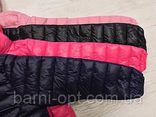 Куртки для дівчаток оптом, Sincere, 4-16 рр, фото 2
