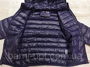 Куртки для дівчаток оптом, Sincere, 4-16 рр, фото 3