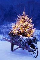 Украшение елки, новогоднее оформление и декор помещений, фасада