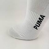 Женские короткие спортивные носки сетка белого цвета, фото 2