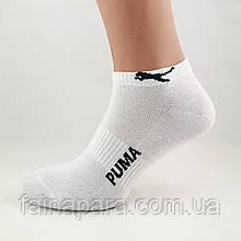 Мужские короткие спортивные носки с сеточкой белого цвета