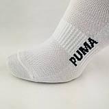 Мужские короткие спортивные носки с сеточкой белого цвета, фото 2