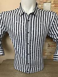 Приталена сорочка з довгим рукавом в полоску Black Stone