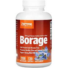 """Бурачник Jarrow Formulas """"Borage"""" містить GLA, 1200 мг (120 гельових капсул)"""