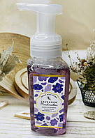 Пінисте мило для рук Bath and Body Works Лавандова маршмеллоу