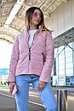 Куртка женская пудровая демисезонная код П308, фото 2