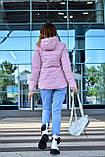 Куртка женская пудровая демисезонная код П308, фото 3
