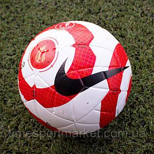 Футбольный мяч Nike RABISCO, фото 2