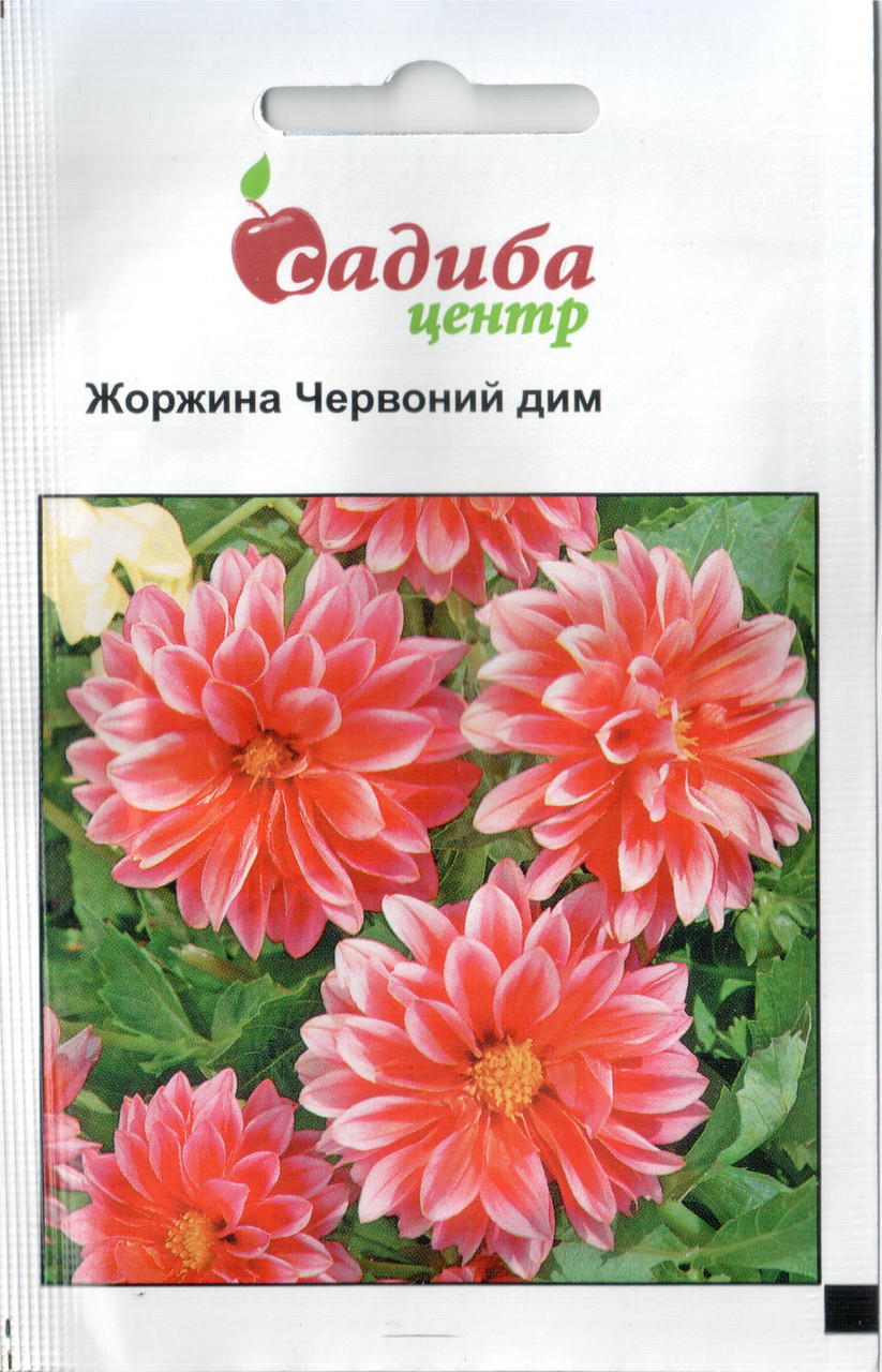 Семена Георгины Красный дым 0,1 г