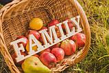 Слово Family заготовка для декора, фото 2