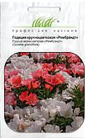 Семена цветов Годеции Рембрандт смесь 0,2 г