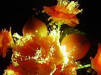 Ночной светильник из световолокна — в виде персика.