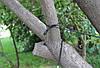 Браслет выживания Paracord black orange, фото 4