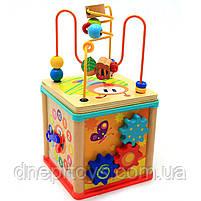 """Дерев'яна іграшка Top Bright сортер бізі-куб """"Великий лабіринт», 1+ (120315), фото 5"""