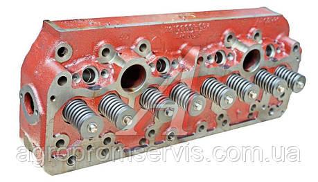 245-1003012 Головка циліндрів(тракторна) (вир-во Білорусь,ММЗ), фото 2