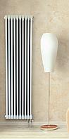 Вертикальный радиатор 2-х трубчатый 1800мм. 5 секций