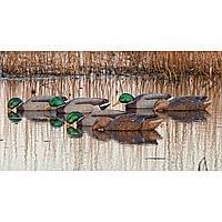 Чучело утки для охоты Avian-X Floating Mallard Duck Decoys - Back Water, 6 Pack