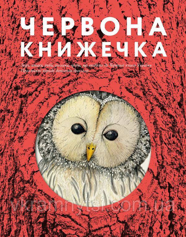 Червона книжечка   Анна Копилова