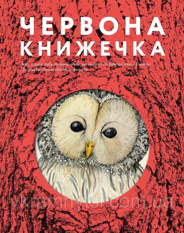 Червона книжечка   Анна Копилова, фото 1