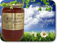 Мёд сосновый натуральный греческий, 960 г