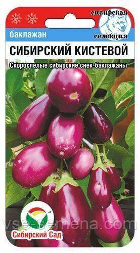 Баклажан Сибірський Кистьовий