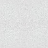 Подвесные потолки AMF Thermatex Antaris C 1200х600х13