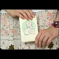 Обложка для паспорта Совы-фотографы + блокнотик