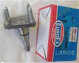 Ступица заднего колеса (ось,шпиндель) Ланос Сенс Lanos Sens Euroex EX-5666R\96115666, фото 4