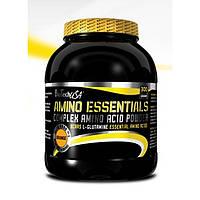 Amino Essentials 300 g melon