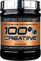 100% Creatine Monohydrate 100 g