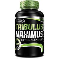 Tribulus Maximus 90таб