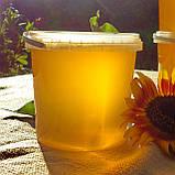 Мед подсолнечниковый урожая 2021 года, фото 4