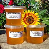 Мед подсолнечниковый урожая 2021 года, фото 2
