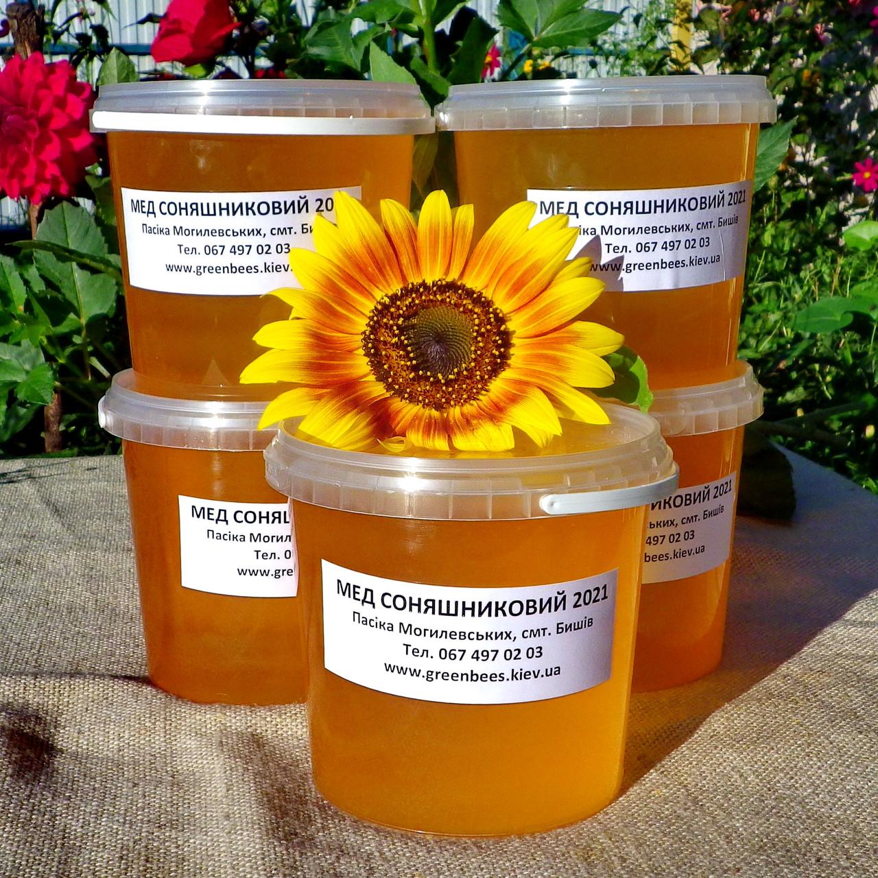 Мед подсолнечниковый урожая 2021 года