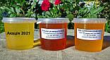 Мед подсолнечниковый урожая 2021 года, фото 5