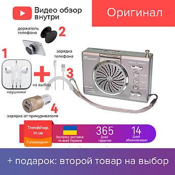 Портативна колонка Mason RM-2420 радіо, радіо від мережі з акумулятором, сіра